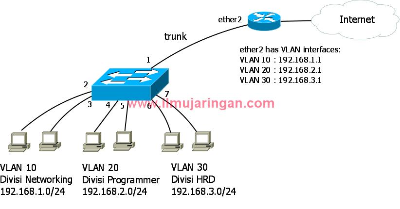 vlan_basic_topology_wm